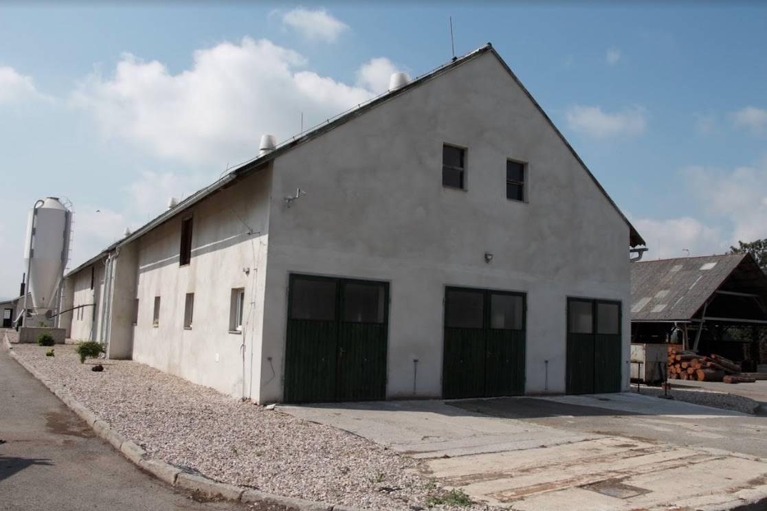 Betty CZ s.r.o - Farma Střemošice, Český chov